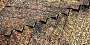 Rohrbruch unter Laminat: Leckortung und Bautrocknung