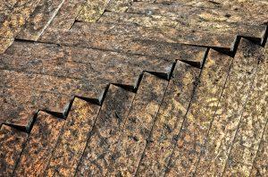 Rohrbruch unter Parkett: Leckortung und Bautrocknung